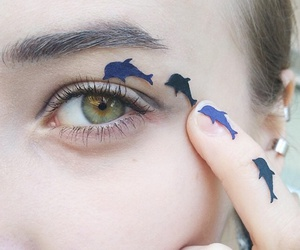 dolphin, eyes, and eye image