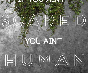 the maze runner and the maze runner quotes image