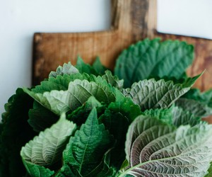 food and herbs image