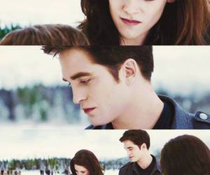 breaking dawn and twilight saga image