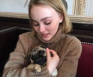 dog, lily rose depp, and pug image