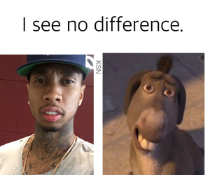 funny and tyga image