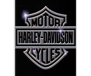 fashion, iphone 5 5s case, and harley davidson logo,cool image