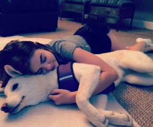 beautiful, dog, and lucy hale image