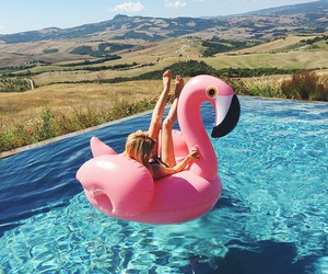 flamingo, holidays, and friends image