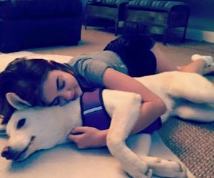 pll, <3, and dog image