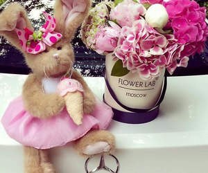 flowers, Best, and car image