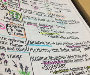cornell, doodles, and study image