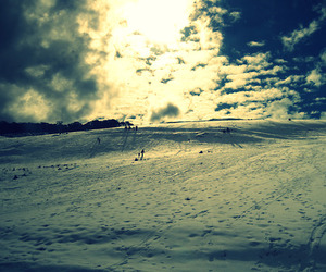 cross processed, light, and scenery image