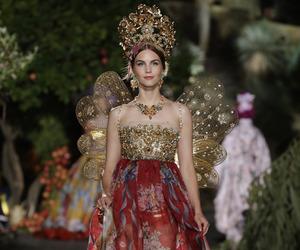 Dolce & Gabbana, dress, and fashion image