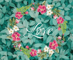 flowers, wallpapers, and love image