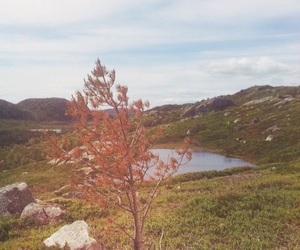 beautiful, mountain, and norwegian image