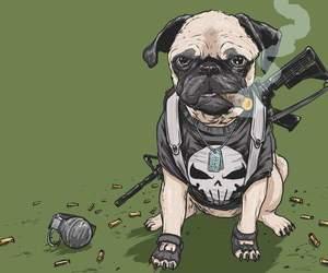 dog, Marvel, and punisher image