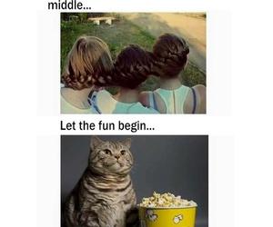 funny, HAHAHA, and lol image