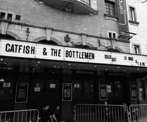 catfish and the bottlemen and music image