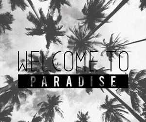 background, paradise, and summer image