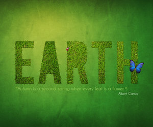 beautiful, butterfly, and earth image