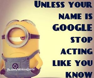 minion and know it all image