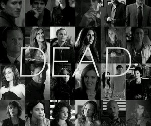 dead and the vampire diaries image