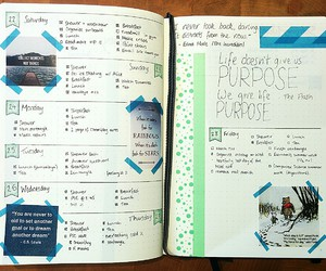 organised, study, and bullet journal image