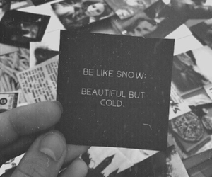 black and white, quotes, and snow image