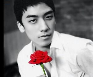 handsome, bigbang, and seungri image