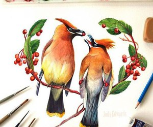 art, drawinf, and birds image