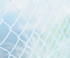 blue, fence, and green image