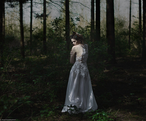forest and girl image