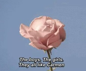 lana del rey, Carmen, and rose image