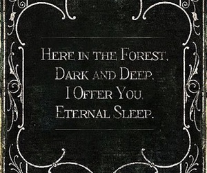 dark, forest, and quotes image