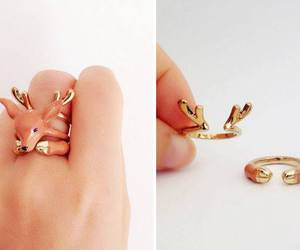 ring and deer image