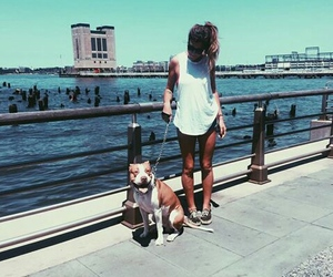 cool, dog, and fashion image