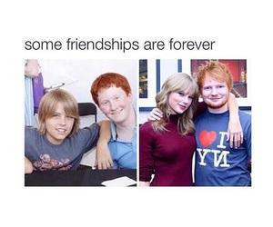 funny, Taylor Swift, and ed sheeran image