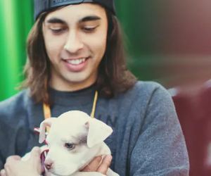 pierce the veil, vic fuentes, and puppy image