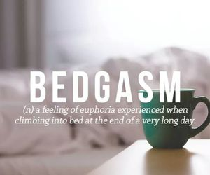 bed, quotes, and bedgasm image