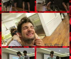 funny, prank, and roses image