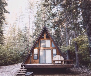 log cabin, tiny house, and woods image