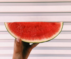 cool and watermelon image