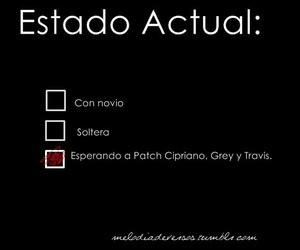 books, patch cipriano, and christian grey image