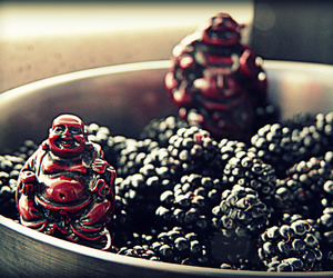 fun, peacefulness, and fruit image