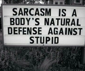 sarcasm, stupid, and quotes image