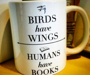 book, wings, and birds image