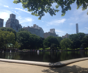 Central Park, new york, and skyline image