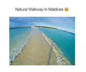beach, Maldives, and ocean image