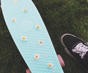 flowers, penny board, and skate image