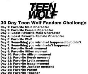 teen wolf, challenge, and fandom image