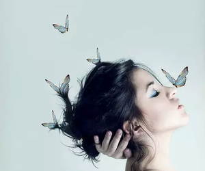 beauty, hair, and butterflies image
