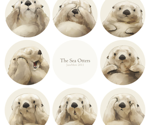 cute, animal, and sea otter image