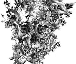flowers, skull, and bird image